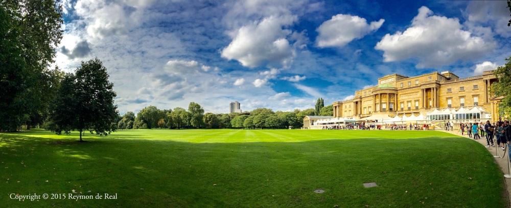 Buckingham Backyard